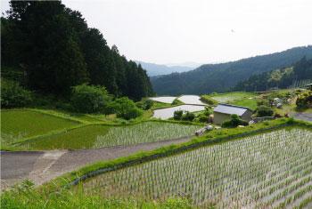 静岡県 天竜